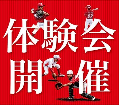 【今年最後の】硬式野球体験会開催